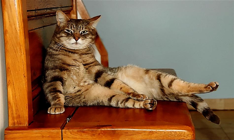 Sit, stand, sit . . . make prolonged sitting fun